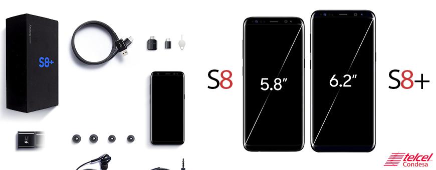 S8 vs S8+ tamaño